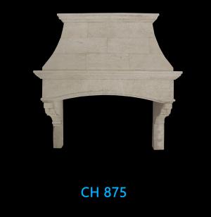 CH 875
